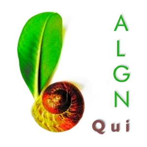 epa063 : algn_-_qui